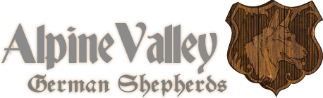Alpine Valley German Shepherds logo